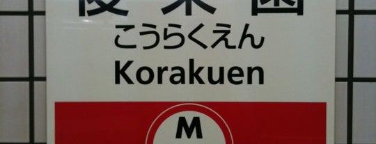 Marunouchi Line Korakuen Station (M22) is one of 読売巨人軍.
