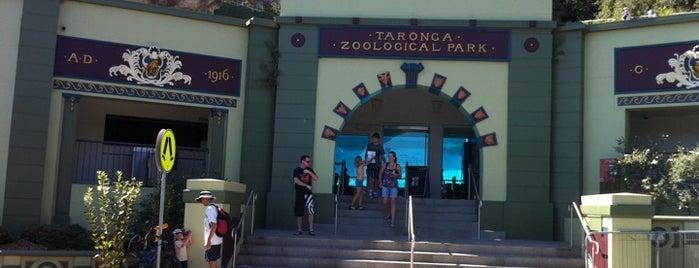 Top picks for Zoos or Aquariums
