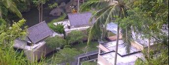 The Samaya Ubud Bali is one of Beautiful Wedding Chapels in Bali.