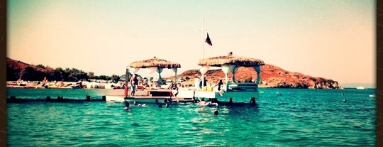 Dodo Beach Club is one of Bodrum !!.