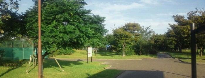 高洲中央公園 is one of 新浦安周辺の公園.