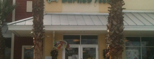 The turtles nest is one of Shopping.