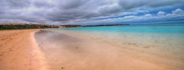 Coral Bay is one of Top 20 Australian Beaches.