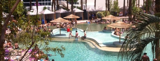 Beachlife at Hard Rock Hotel is one of Las Vegas extended.