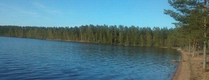 Высокинское озеро is one of развлечения и отдых.