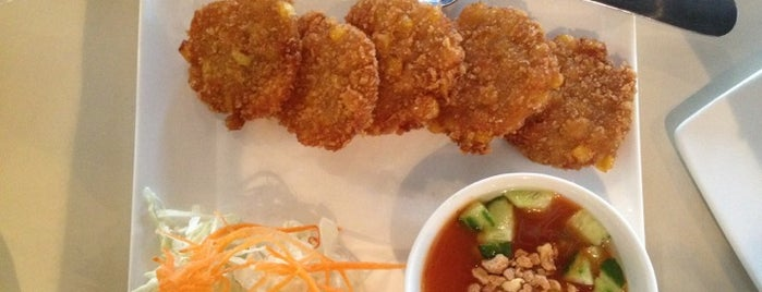 Coconut Thai Grill is one of FOOD in Dallas-Ft Worth Metroplex.