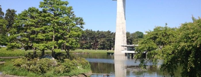 松見公園 is one of りんりんロードポタ♪.