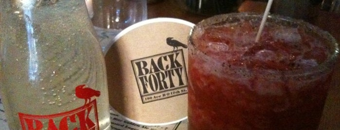 Back Forty is one of Union square eats.