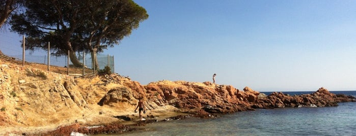 Plage de Palombaggia is one of Corsica.