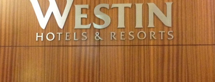The Westin Michigan Avenue Chicago is one of Hotels.