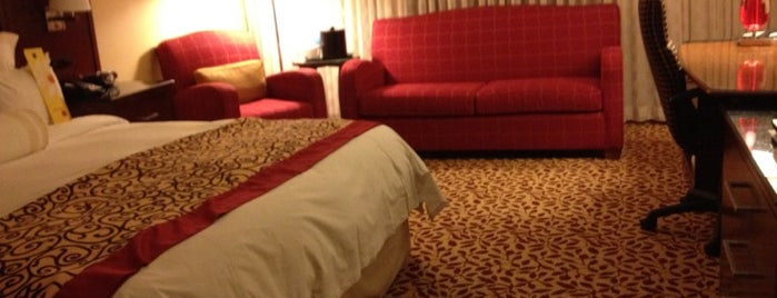 Dallas/Fort Worth Airport Marriott is one of Hotels.
