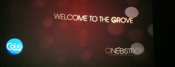 CinéBistro at Hyde Park Village is one of Things to do in Tampa Bay.