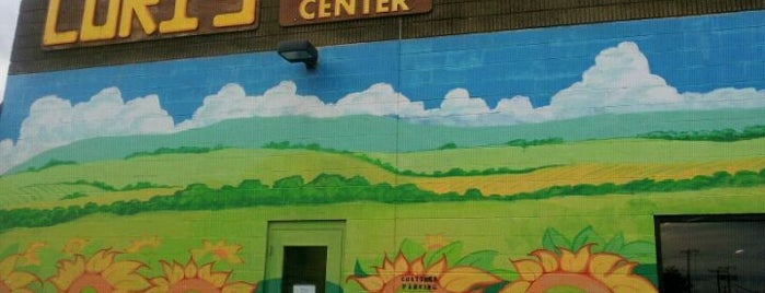 Lori's Natural Foods Center is one of Roc.