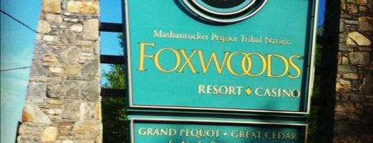 Foxwoods Resort Casino is one of * Spots *.