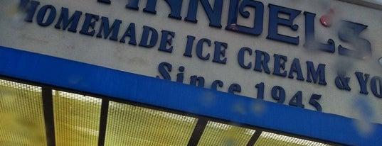 Handels Homemade Ice Cream & Yogurt is one of Must-visit Desserts in Indy.