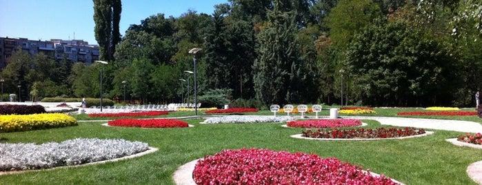 Great Outdoors in София