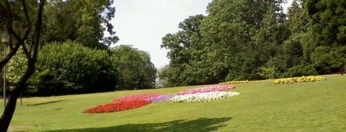 Stadtpark is one of Bochum #4sqcities.