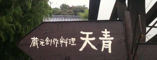 蔵元創作料理 天青 is one of 海老名・綾瀬・座間・厚木.