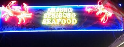 Senibong Village Seafood is one of makan sedap.