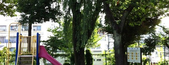 須賀公園 is one of 公園.