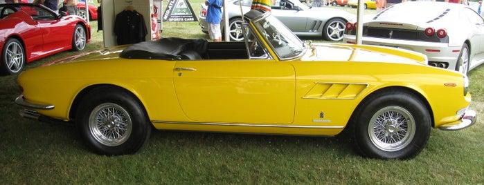 PVGP Schenley Park International Car Shows