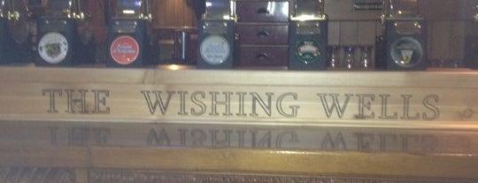 The Wishing Wells is one of Pub & Birrerie.