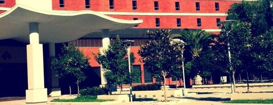 İzmir Ekonomi Üniversitesi is one of İzmir.