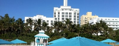 The Palms South Beach Hotel Miami is one of Beach Hotels in Miami Beach.