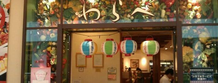 わらべ ららぽーとTOKYO-BAY店 is one of 食べ放題.