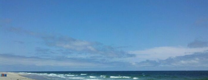 Best Cape Cod