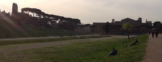 Circus Maximus is one of Parks in Rome - Italy.