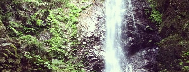 Hossawa Falls is one of 日本の滝百選.