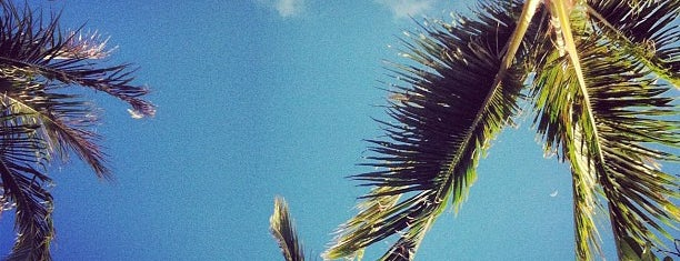Kā'anapali Beach is one of Eating and hanging out in Maui.