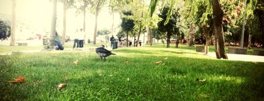 Bebek Parkı is one of İstanbul Avrupa Yakası #2 🍁🍃.