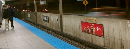 CTA - Harlem is one of CTA Blue Line.