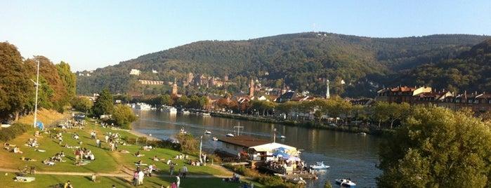 Neckarwiese is one of Германия.