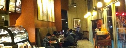 Starbucks is one of Must-visit Food in Pasadena.