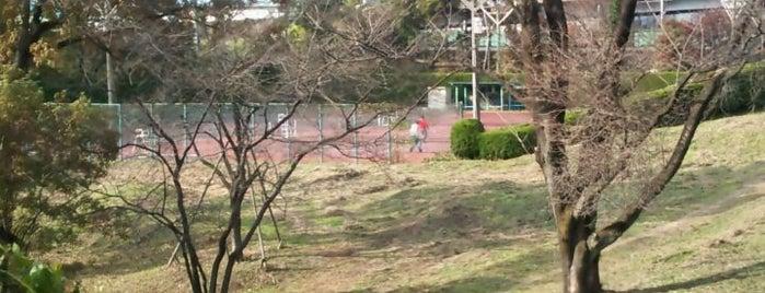 児子沼公園テニスコート is one of Tennis Court relates on me.
