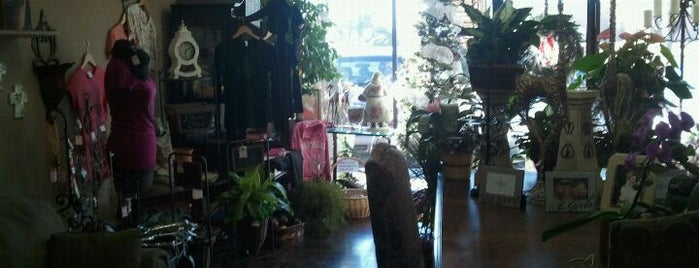 Capitol Hill Florist — Earlywine is one of Use Your Keep It Local OK Card.