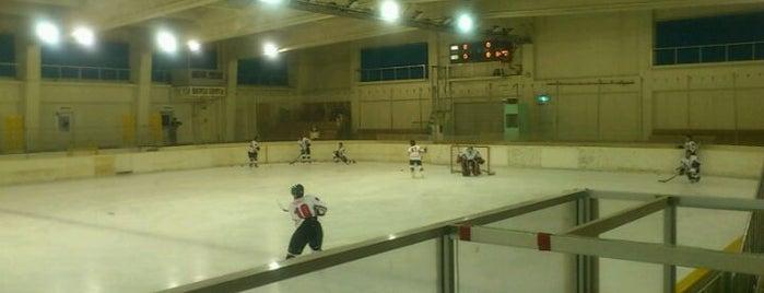 苫小牧市ときわスケートセンター is one of スケートリンク.