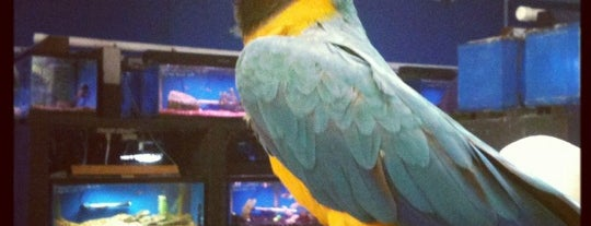 Markheim Tropical Fish & Pets is one of Top picks for Pet Stores.