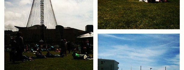 Waitangi Park is one of The coolest little capital in the world.