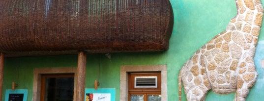 Tiki im Kunsthof is one of Essensquest.
