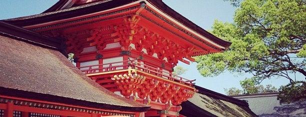 Usa Jingu Shrine is one of 神社.
