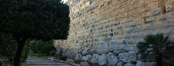 Muralles de Tarragona is one of HOSTAL TORRE MONTESANTO.