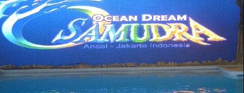 Ocean Dream Samudra (Gelanggang Samudera Ancol) is one of Ancol.