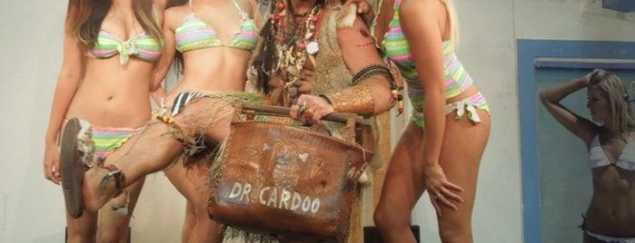 Dr Cardoo's Tiki bar is one of FUN.