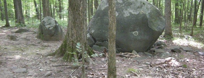 Whale Rock in North Woods is one of Sustainable Skidmore.
