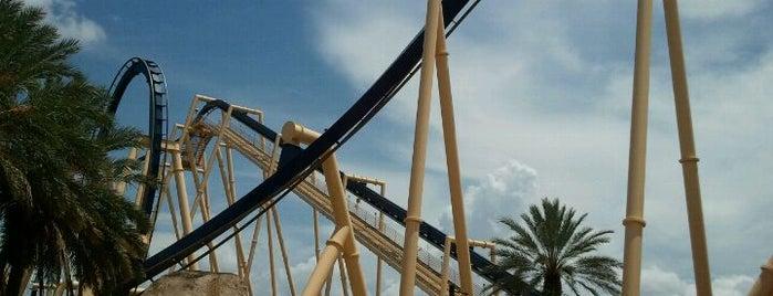 Montu is one of Must Ride Roller Coasters.