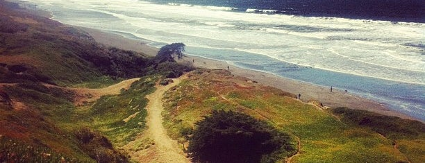Fort Funston is one of San Francisco's Best Great Outdoors - 2012.